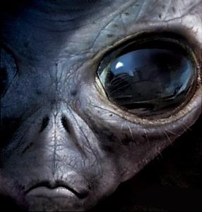 17febb4-alieno_big