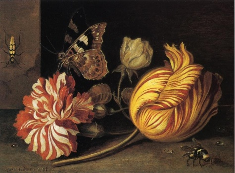 Ast_Balthasar_van_der-Study_of_Flowers_and_Insects.normal