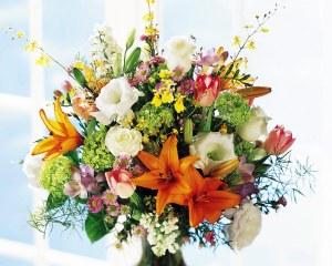 Alla poetessa il dono di questi fiori, per ringraziarla dell'omaggio di un'altra delle sue belle, asciutte poesie
