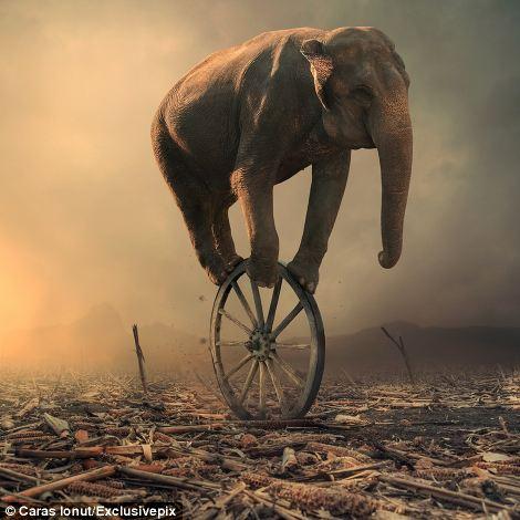 Il mondo in equilibrio. Se lo perde lo aspetta solo la distruzione.