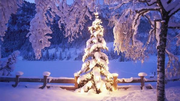 01gennc-albero_natale_con_neve