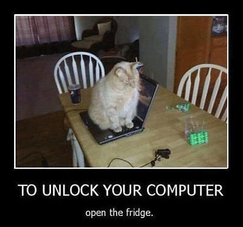 apri il frigo