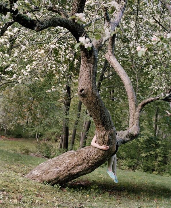 Riding the apple tree - 2016 - Jocelyn Lee